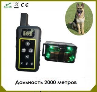 Электронный ошейник ДТ2000 (Франция)